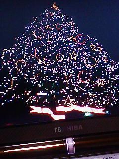 Xmasイルミ千葉・中山競馬場のツリー