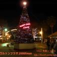 ニッケコルトンプラザXmas Tree in市川